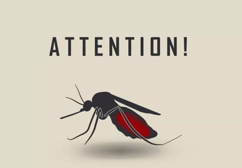 マラリアに最適な薬